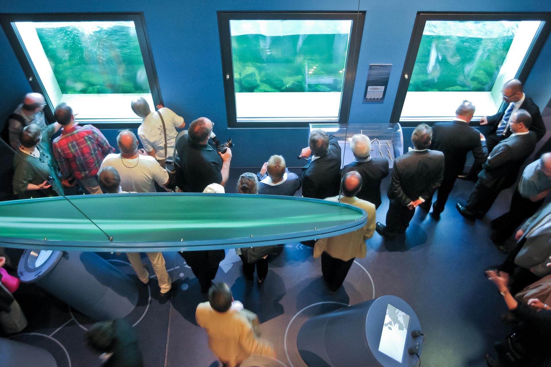 Mosellum | Erlebniswelt Fischpass Koblenz