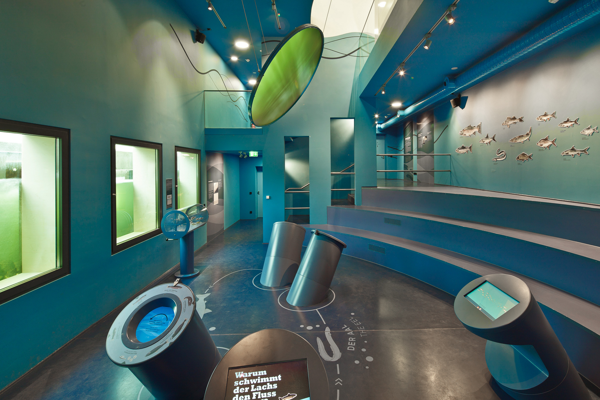 Mosellum – Interactive Presentation of the Koblenz Fish Ladder